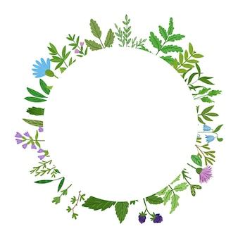 Corona di erbe selvatiche. foglie di cartone animato, brunch, fiori, ramoscello isolato. illustrazione disegnata a mano.