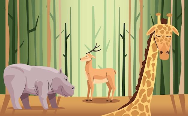 Ippopotamo selvatico e renne con giraffa nella scena della foresta
