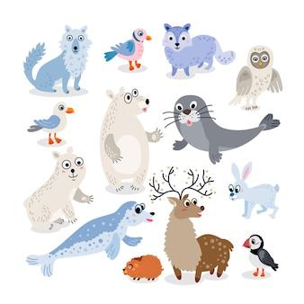 Set stile piatto di animali selvatici del polo nord