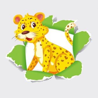 Tigre selvaggia che esce dal buco della carta