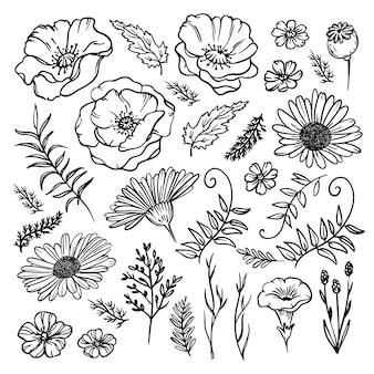 Wildflower sketch floreale monocromatico con papavero camomilla campana fiore e erba illustrazione insieme