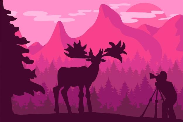 Illustrazione piana di vettore del fotografo della fauna selvatica. paesaggio serale minimalista con silhouette di alce