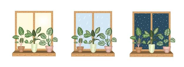 Windows con piante d'appartamento tropicali in vaso. vista sul tempo piovoso, nevoso e soleggiato. stile acquerello