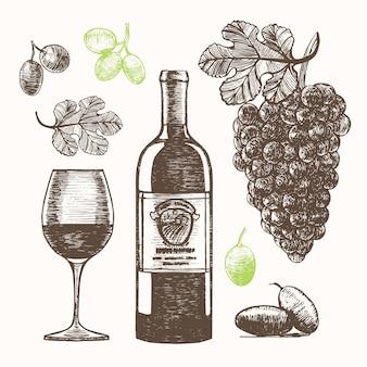 Schizzo di tiraggio della mano del set di vino.