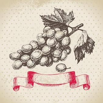 Fondo dell'annata del vino con l'uva. illustrazione disegnata a mano