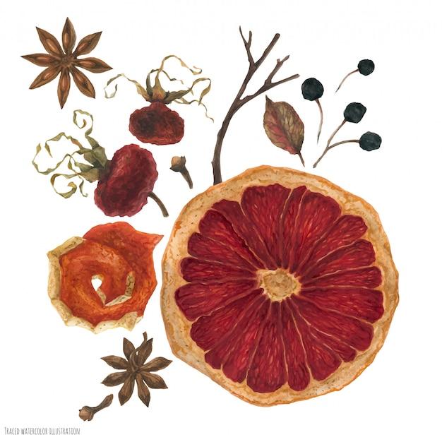 Profumo invernale con arance essiccate e piante invernali