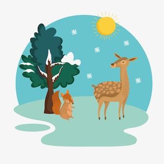 Scoiattolo invernale e cervo