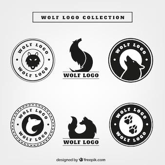 Confezione di loghi wolf