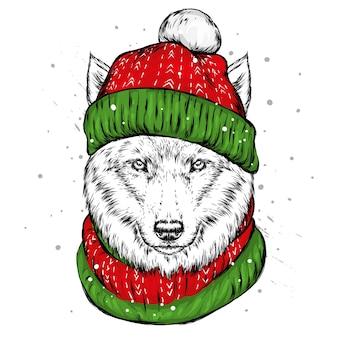 Il lupo con il cappello invernale. cane di babbo natale.