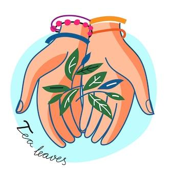 Foglie di tè della stretta della mano della donna. germoglio verde e foglia di tè piantina