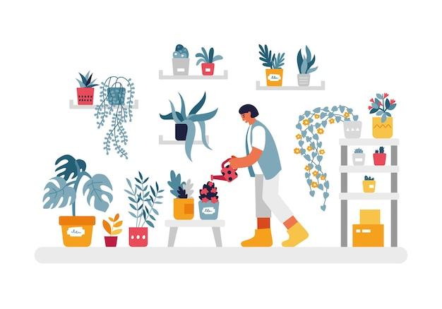 Donna che innaffia l'illustrazione delle piante domestiche. il personaggio femminile con la lattina rossa sta annaffiando fiori e arbusti su rack e scaffali in appartamento. bellezza e comfort naturale a casa fumetto vettoriale.