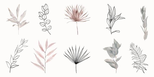 Meraviglioso set di foglie