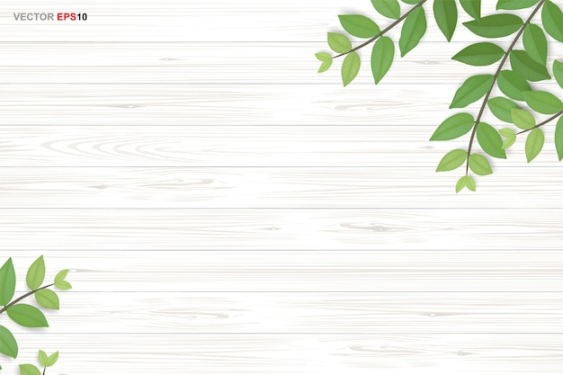 Priorità bassa di struttura di legno con foglie verdi. realistico