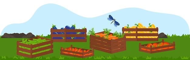 Scatola di legno con eco cibo, frutta e verdura illustrazione del raccolto.