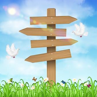 Scheda di direzione di legno sulla priorità bassa del cielo dell'erba