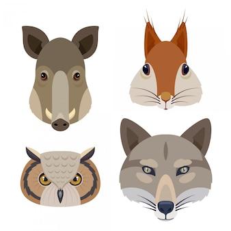 Set di icone di teste di animali del bosco. illustrazione piatta tra cui scoiattolo, gufo, maiale e lupo