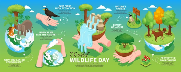 Disposizione orizzontale di infographics di giornata mondiale della fauna selvatica con informazioni sulla protezione dell'ambiente e degli animali selvatici isometrica