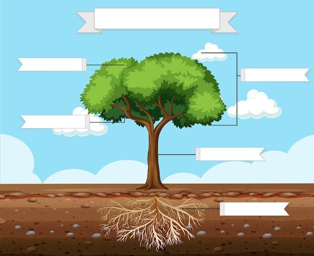 Scrivi parti di un foglio di lavoro sull'albero per bambini