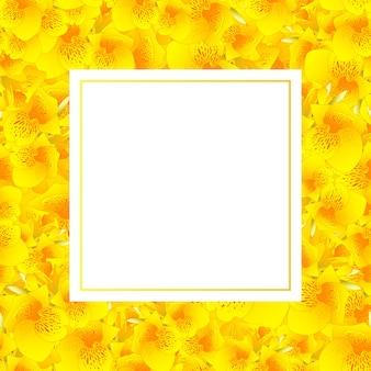 Carta di banner giglio giallo canna
