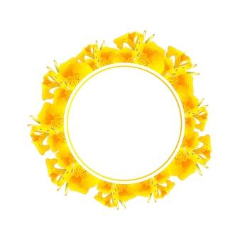 Corona gialla dell'insegna del giglio di canna
