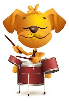 Il batterista giallo del cane di divertimento batte i tamburi. isolato