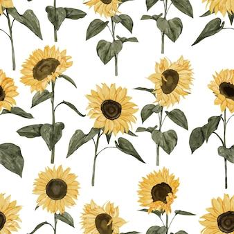 Stile acquerello dipinto a mano del modello della pianta del girasole giallo