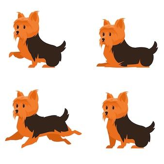 Yorkshire terrier in diverse pose. cane carino in stile cartone animato.
