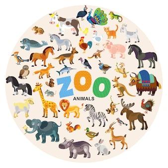 Insieme del fumetto degli animali dello zoo isolato sull'illustrazione bianca di vettore del fondo