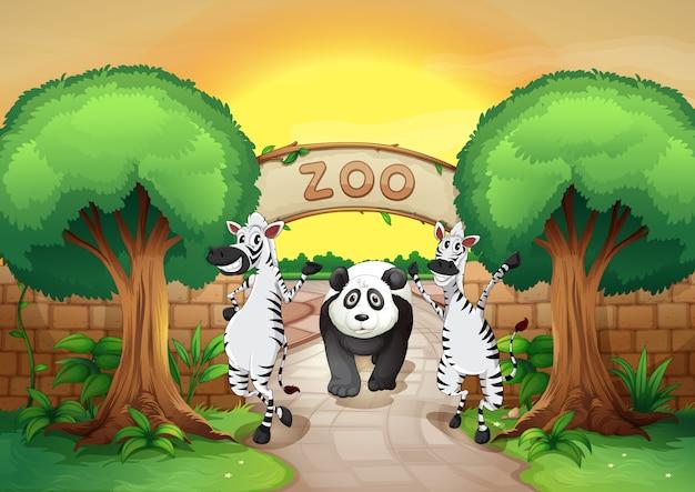 Uno zoo e gli animali