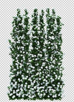3d geef van geïsoleerde borstelboom terug