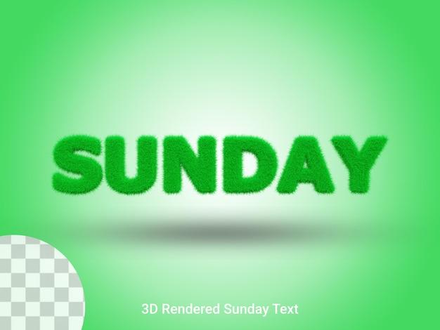 3d-gerenderde tekst op zondaggras