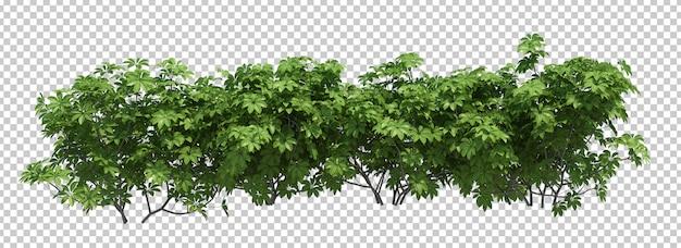 3d render brush tree aislado en blanco PSD Premium