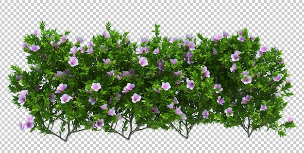 3d render brush tree aislado en blanco