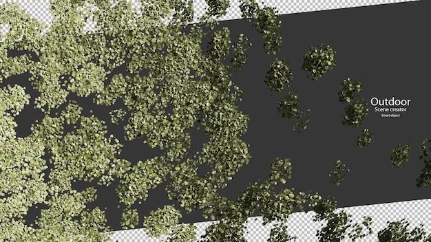 3d-rendering bovenaanzicht van blad