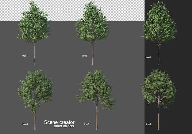 3d-rendering, verschillende boomlay-outs