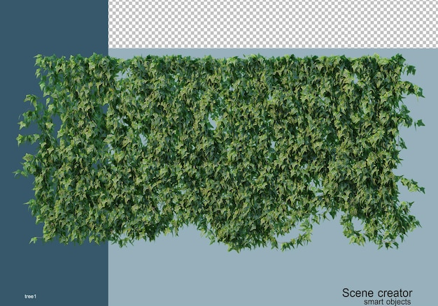 3d-rendering verschillende soorten bomen