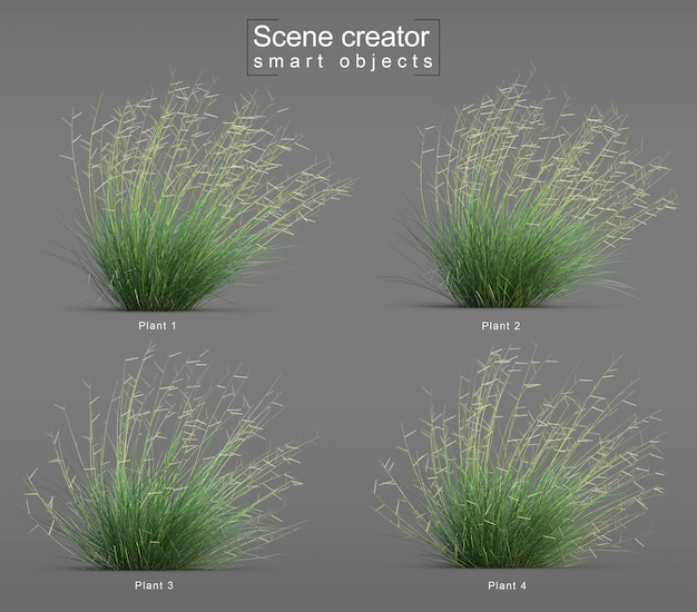 3d-weergave van blonde ambition blue grama grass blow scene creator