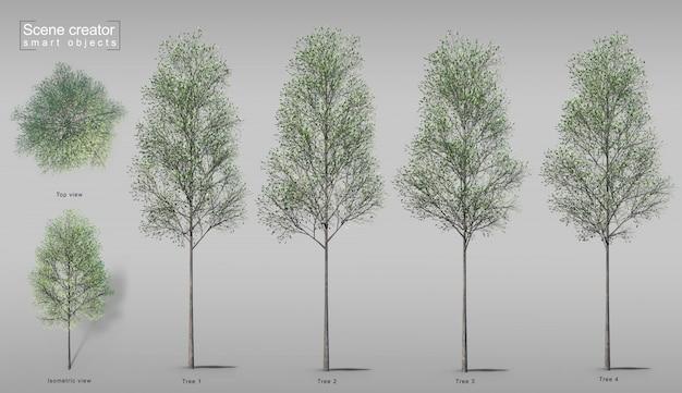 3d-weergave van bomen