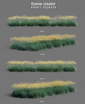 3d-weergave van boulder blue fescue grass