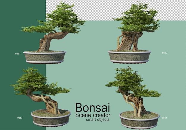 3d-weergave van de opstelling van bonsaibomen