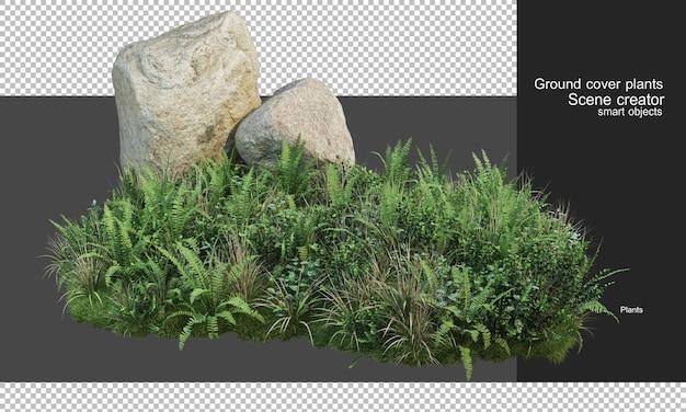 3d-weergave van dekplanten en grote rotsen Premium Psd