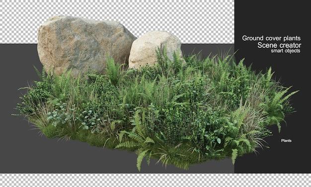 3d-weergave van dekplanten en grote rotsen