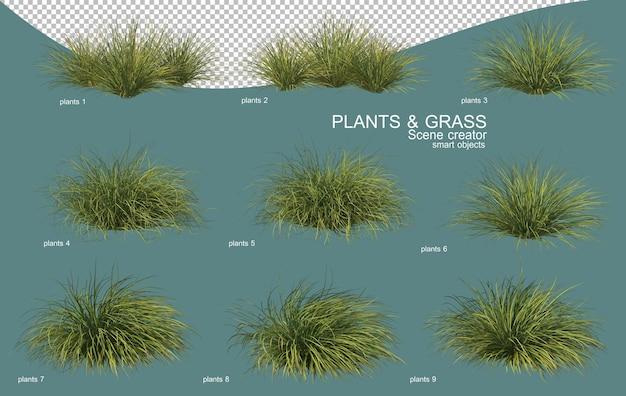 3d-weergave van gras- en struikarrangementen