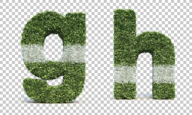 3d-weergave van gras speelveld alfabet g en alfabet h