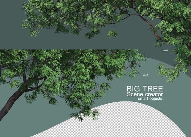 3d-weergave van grote boomregelingen