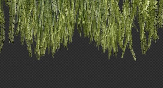3d-weergave van hangende varens