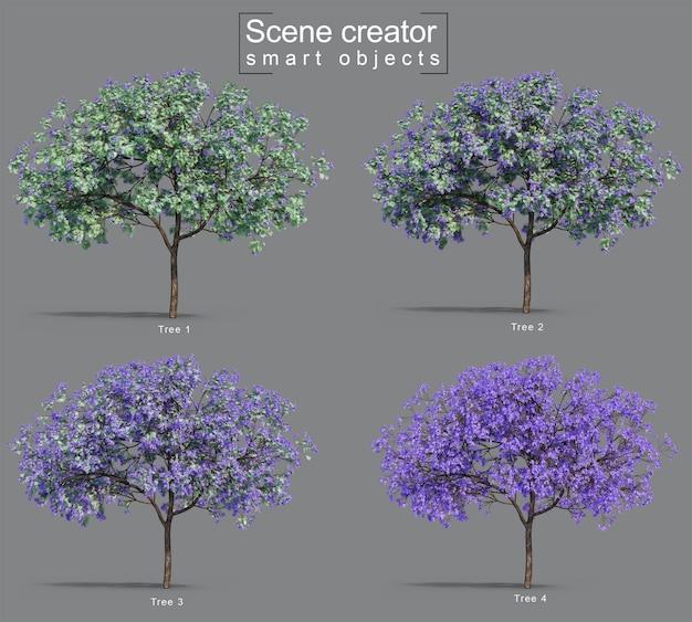 3d-weergave van jacaranda mimosifolia bomen
