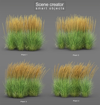 3d-weergave van karl foerster feather reed grass