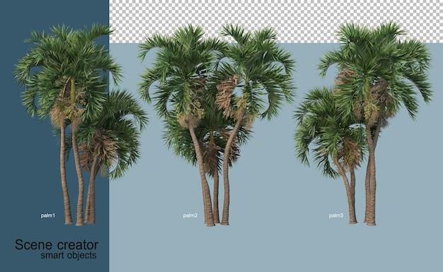 3d-weergave van prachtige bomen in verschillende hoeken geïsoleerd