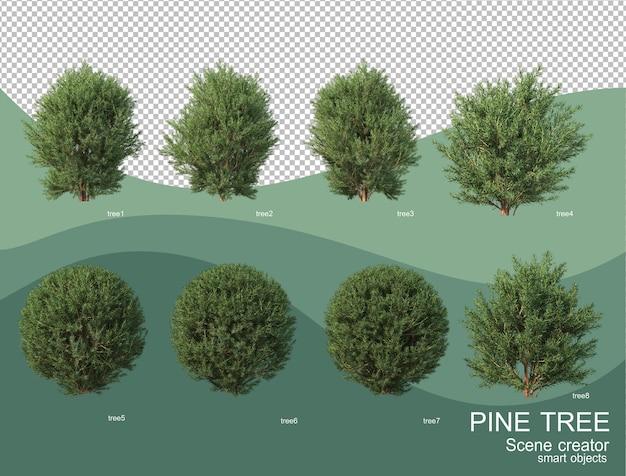 3d-weergave van verschillende dennen arrangementen